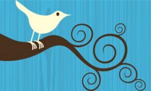 Twitter-bird-logo-001-300x180