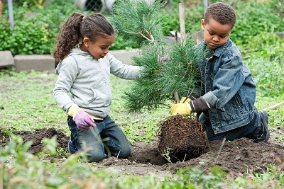 Organic Gardening Scientist Program